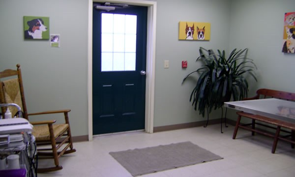 Blackwater Veterinary Services Exam Room