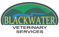 Blackwater Veterinarian